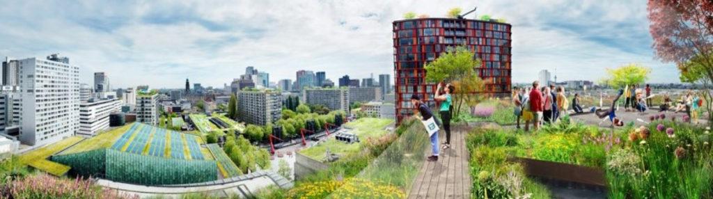7 Square Endeavour Rotterdam